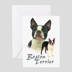 Boston Terrier-2 Greeting Card