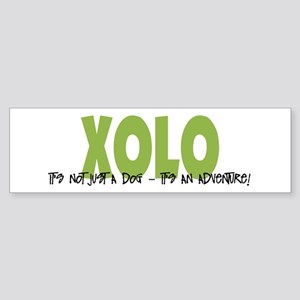 Xolo IT'S AN ADVENTURE Bumper Sticker