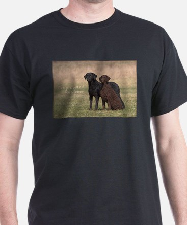 Curly Coated Retriever-5 T-Shirt