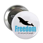 Dolphin Freedom 2.25