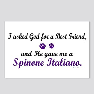 God Gave Me A Spinone Italiano Postcards (Package