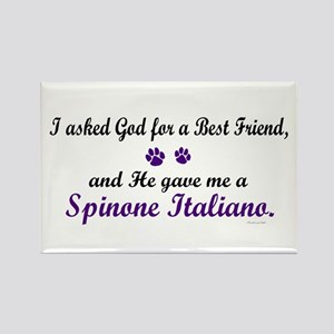 God Gave Me A Spinone Italiano Rectangle Magnet