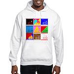 Fancy Colours Hooded Sweatshirt
