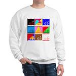 Fancy Colours Sweatshirt