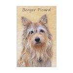 Berger Picard Mini Poster Print