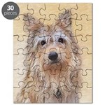 Berger Picard Puzzle