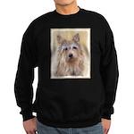 Berger Picard Sweatshirt (dark)
