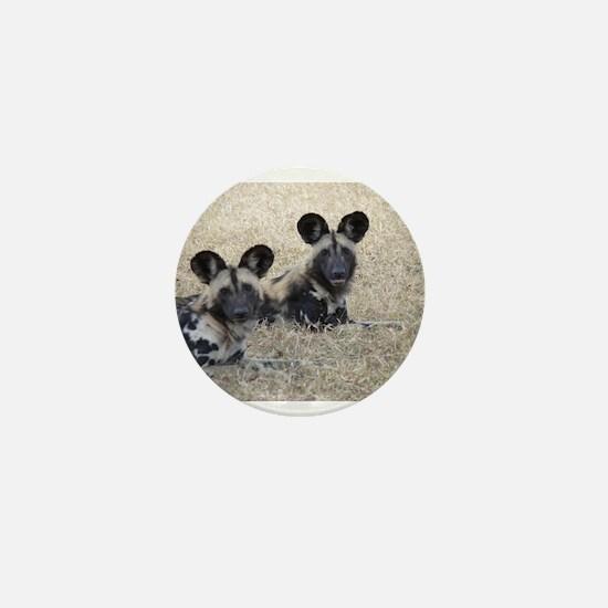 wild-dogs Mini Button