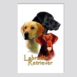 Labrador-7 Postcards (Package of 8)