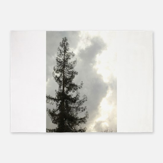 tall redwood tree against clouds in 5'x7'Area Rug