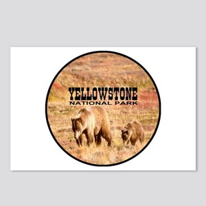 Yellowstone National Park Gri Postcards (Package o