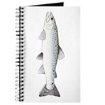Sea trout Sea Run brown trout Journal