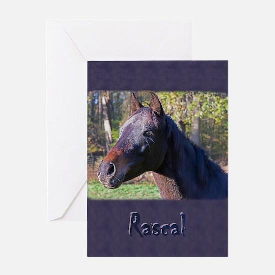 Greystoke pony Greeting Cards