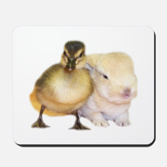 Duck and Bunny Mousepad