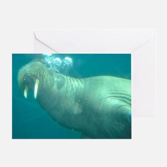 Funny Walrus Greeting Card