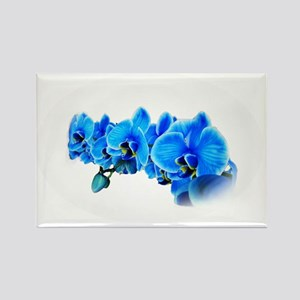 Ice blue orchids Rectangle Magnet