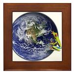 Earth Frog Framed Tile