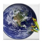 Earth Frog Tile Coaster
