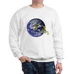 Earth Frog Sweatshirt