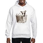 JRT Humor - JACKUZZI Hooded Sweatshirt
