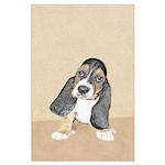 Basset Hound Puppy Large Poster