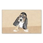 Basset Hound Puppy Sticker (Rectangle 10 pk)