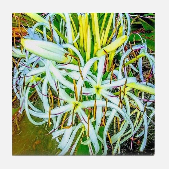 Wild Agapanthus Tile Coaster
