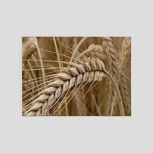 grain 5'x7'Area Rug