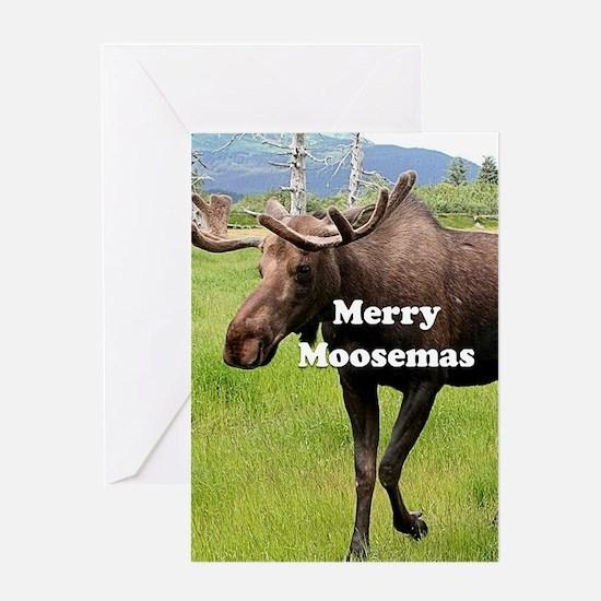 Merry Moosemas, Alaskan moose Greeting Cards