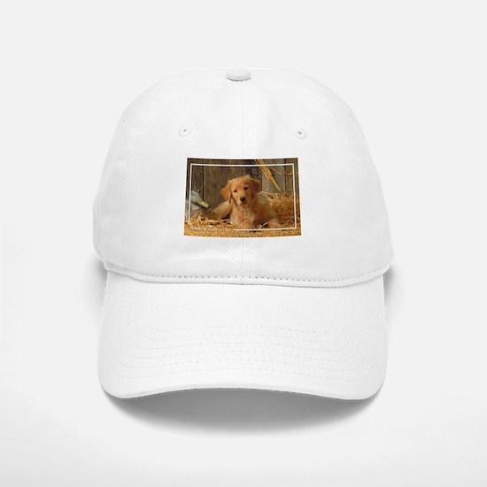 Golden Retriever-6 Baseball Baseball Cap