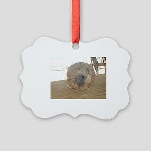 Wilson Picture Ornament