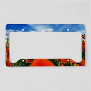Poppy Flowers Field License Plate Holder