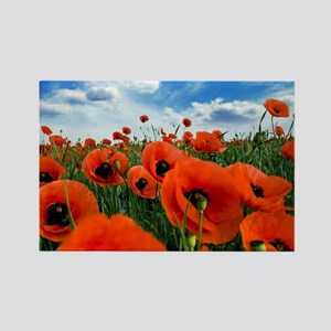Poppy Flowers Field Magnets