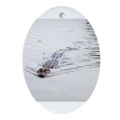 Brandon FL Pond Alligator Ornament (Oval)