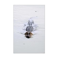 Brandon FL Pond Alligator Posters