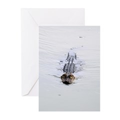 Brandon FL Pond Alligator Greeting Cards