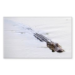 Brandon FL Pond Alligator Decal
