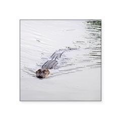 Brandon FL Pond Alligator Sticker