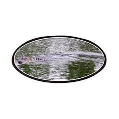 Brandon FL Pond Alligator Patch