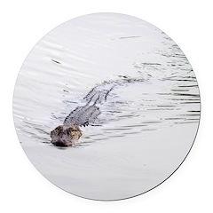 Brandon FL Pond Alligator Round Car Magnet