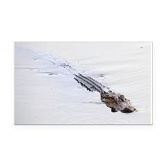 Brandon FL Pond Alligator Rectangle Car Magnet
