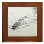 Brandon FL Pond Alligator Framed Tile