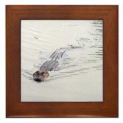 Brandon FL Pond Alligator Framed Tile