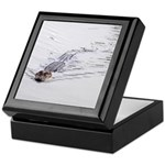 Brandon FL Pond Alligator Keepsake Box