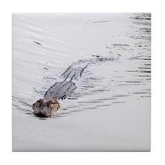 Brandon FL Pond Alligator Tile Coaster