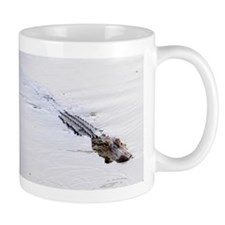 Brandon FL Pond Alligator Mugs