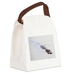Brandon FL Pond Alligator Canvas Lunch Bag