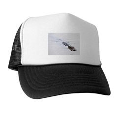 Brandon FL Pond Alligator Trucker Hat