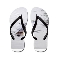 Brandon FL Pond Alligator Flip Flops