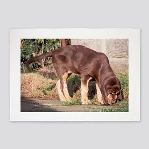 LS puppy liver and tan bloodhound 5'x7'Area Rug